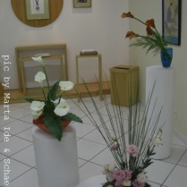 Fundação Mokiti Okada - Exposição de Ikebana - unidade são Mateus - SP